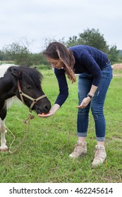 Young woman feeding little pony with carrot