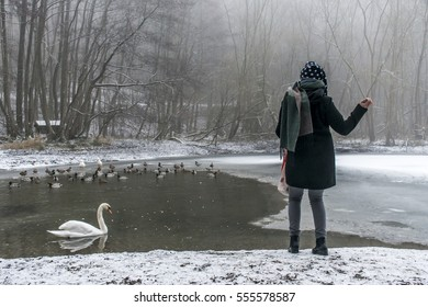 A young woman feeding on a lake swans and ducks Bird feeding in winter 6