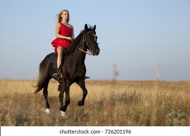 Young woman galloping on horseback. Blonde jumps on stallion fast across countryside road through fields