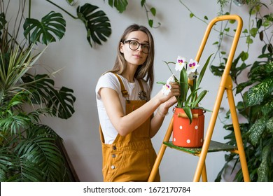 Young woman gardener in glasses wearing overalls, taking care for orchid in old red milk can standing on orange vintage ladder, looking at camera. Home gardening, love of houseplants, freelance.