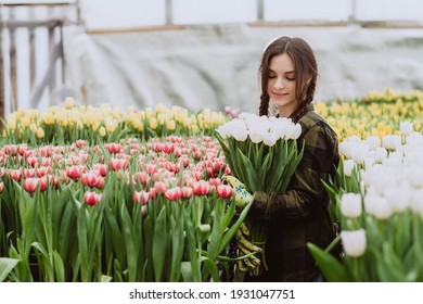Young woman gardener holds a bouquet of tulips grown in a greenhouse. Spring flowers and floriculture. Soft selective focus, defocus.