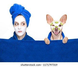 young woman or girl  with beauty facial cream mask on face  with chihuahua dog with wellness treatment, isolated on white background