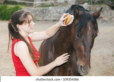 young woman grooming her horse
