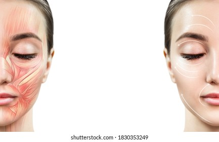 Young woman with half of face with muscles structure under skin. Over white background.