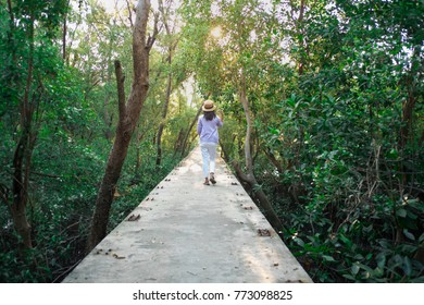 Young woman happy on top walkway with large areas of ancient woodland. image for nature, journey, travel, success, portrait concept