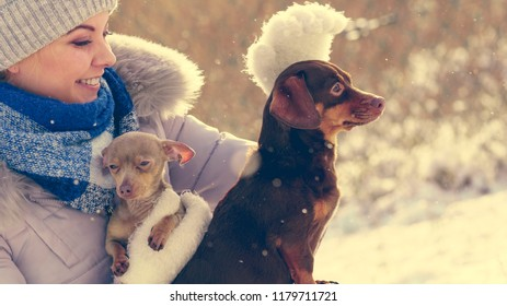 Young woman having fun during winter. Female playing with her two small purebreed dogs puppies while snow is snowing