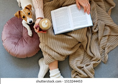 若い女性と彼女の愛らしいジャック・ラッセル・テリアの子犬は、毛布で覆われ、ソファに座り込んだ。愛するペットのコンセプトを持つ、家での怠惰な午後。内部背景に接写スペース。