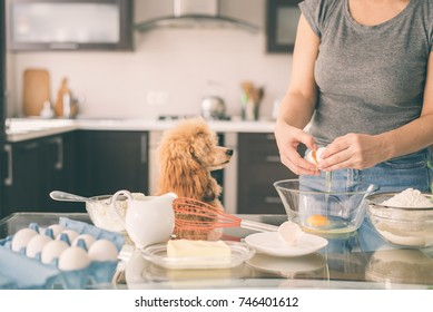 Young woman with her dog is cooking on the kitchen .