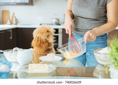 Young woman with her dog is making breakfast . Cooking pancakes.