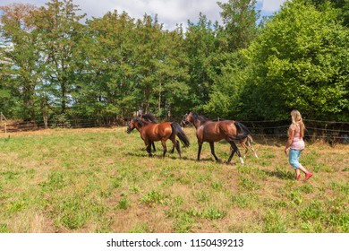 Young woman with her horses