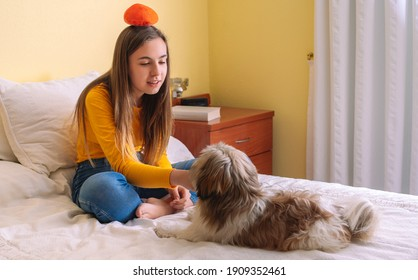 Young woman with her pet dog playing on the bed