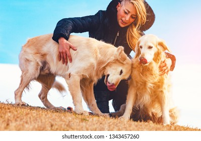 Young woman and her pets having a funny time in outdoor.Funny dogs.Golden retriever