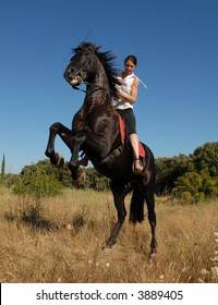 young woman and her rearing black stallion