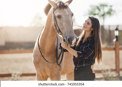 Young woman highly skilled equine foot care professional walking out a horse on animal farm on a sunny summer day.