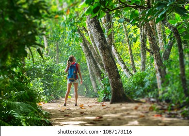 Young woman hiker stands in the tropical lush forest and looks at the trees. Tilt shift effect applied on the edges