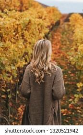 Young woman hiking in Lavaux vineyards in autumn. Back view