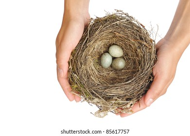 Young woman holding blackbird nest over white background