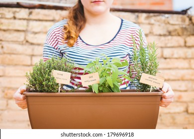 Young woman holding pot of aromatic herbs on urban garden