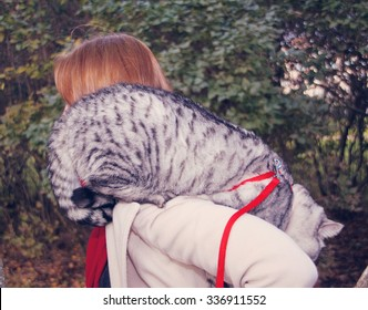 Young woman holding Scottish straight shorthair cat