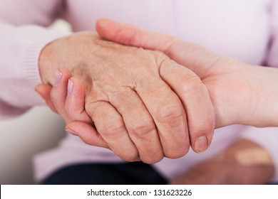 Young Woman Holding Senior Woman's Hand; Indoor