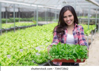 young woman holding a small green plant. new life concept. hydroponic farming