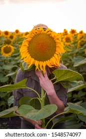 Young woman holding a sunflower in front of her face on sunflowers fiels sunset
