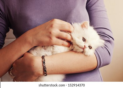 Young woman holding a white kitten