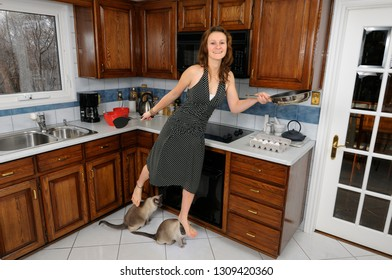 Young woman homemaker flying in kitchen with frying pan and siamese cats