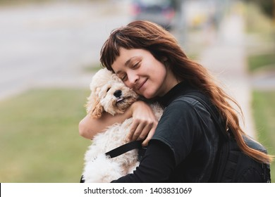 Young woman hugging a white adorable Maltese and Poodle mix Puppy (or Maltipoo dog)