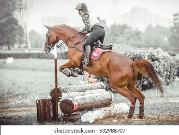 Young woman jumps a horse during practice on cross country eventing course, duotone art