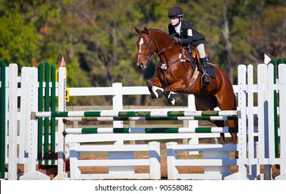 Young woman jumps horse over an obstacle during an event in an arena