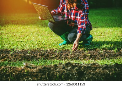 Young woman with laptop sitting in plots vegetable garden. using agriculture technology using tablet computer analysis data read a report.
