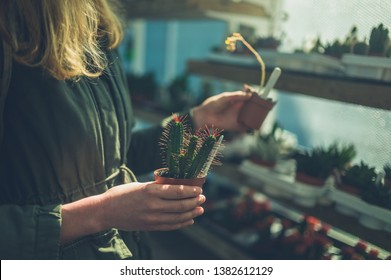 A young woman is looking at a cactus in a garden center