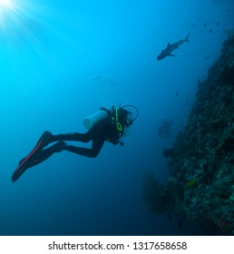 Young woman and man scuba divers exploring coral reef. Underwater sport and leasure activities.