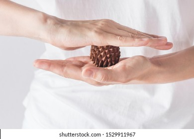 Young woman massage therapist in white shirt holds in hands spiky physio ball from sandal wood for relaxation ailment pain treatment reflexology. Physiotherapy concept