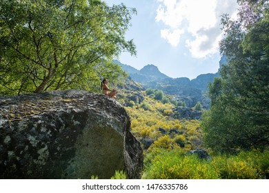Young woman woman meditating and doing yoga on a sunny bright day. Incredibly beautiful landscape. On background forest.