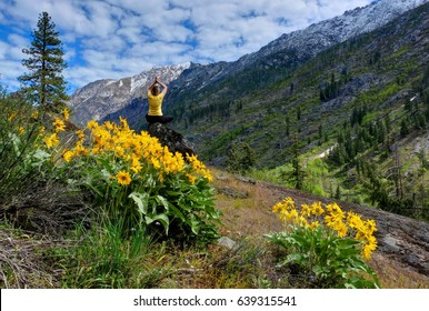Young woman meditating in nature. Arinca flowers in alpine meadows. Cascade Mountains. Seattle. Leavenworth. WA.  The United States.