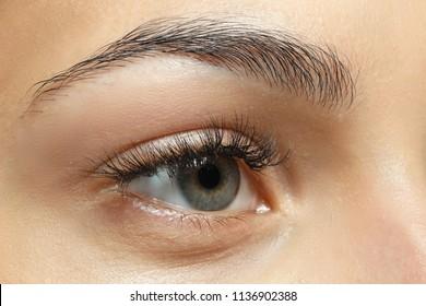 Young woman with natural eyebrows, closeup
