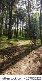 Young woman on bike in pine forest