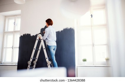 A young woman painting wall black. A startup of small business.