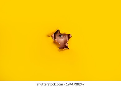 Young woman peeks out of a hole in the wall on a yellow background. Banner.