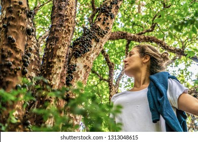 """Young Woman picking Brazilian black cherry called """"Jaboticaba"""" on the tree loaded."""