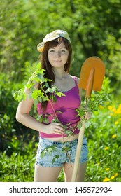 Young woman planting currant in garden