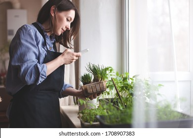 Young woman planting home with greenery standing with phone and flowerpot.concept of education care home plants