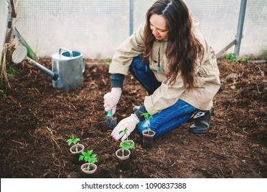 A young woman is planting a tree.