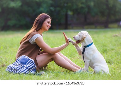 Young woman playing with cute Yellow Labrador Retriever in public park. Dog best friend.