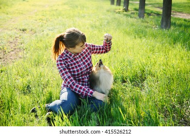 Young woman playing with her dog sheltie on the grass; trainig the shetland sheepdog in the park