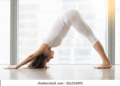 Young woman practicing yoga, stretching in Downward facing dog exercise, adho mukha svanasana pose, working out, wearing sportswear, white t-shirt, pants, indoor full length, near floor window