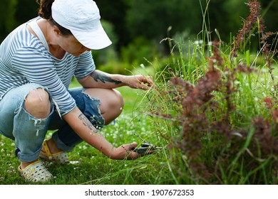 Young woman pruning bushes in the garden