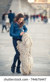 Young woman with puli dog walking at the street. City. Lifestyle.